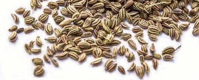 This image has an empty alt attribute; its file name is ajwain6.jpg